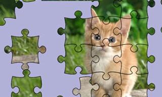 Jigsaw Puzzle: Cute Kittens