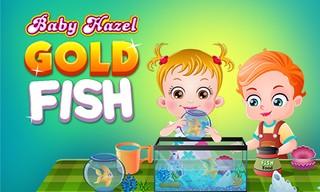 Baby Hazel Gold Fish
