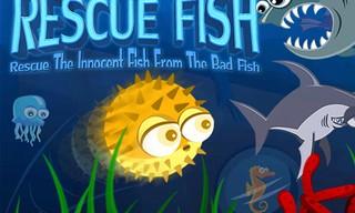 Rescue Fish