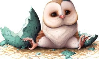 Cute Owl Slide