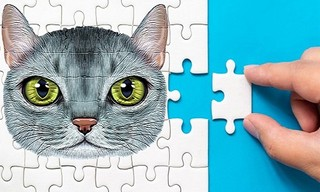 Abyssinian Puzzle Challenge