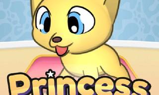 Princess Pet Studio