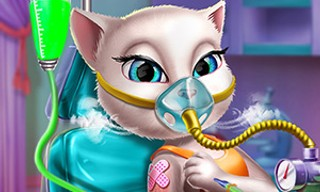 Kitty Mission Accident ER